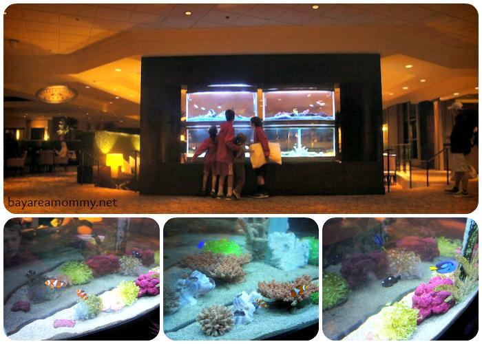 Sheraton Anaheim Aquarium
