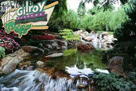 gilroy3