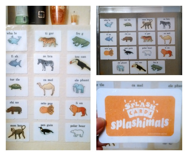 Splashcards