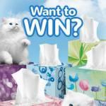 Scotties Supports Kittens + Giveaway #ScottiesKittens
