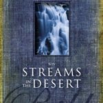 NIV Streams In The Dessert Bible Review